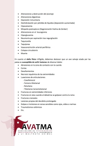 Informe veterinario tordos Elche2