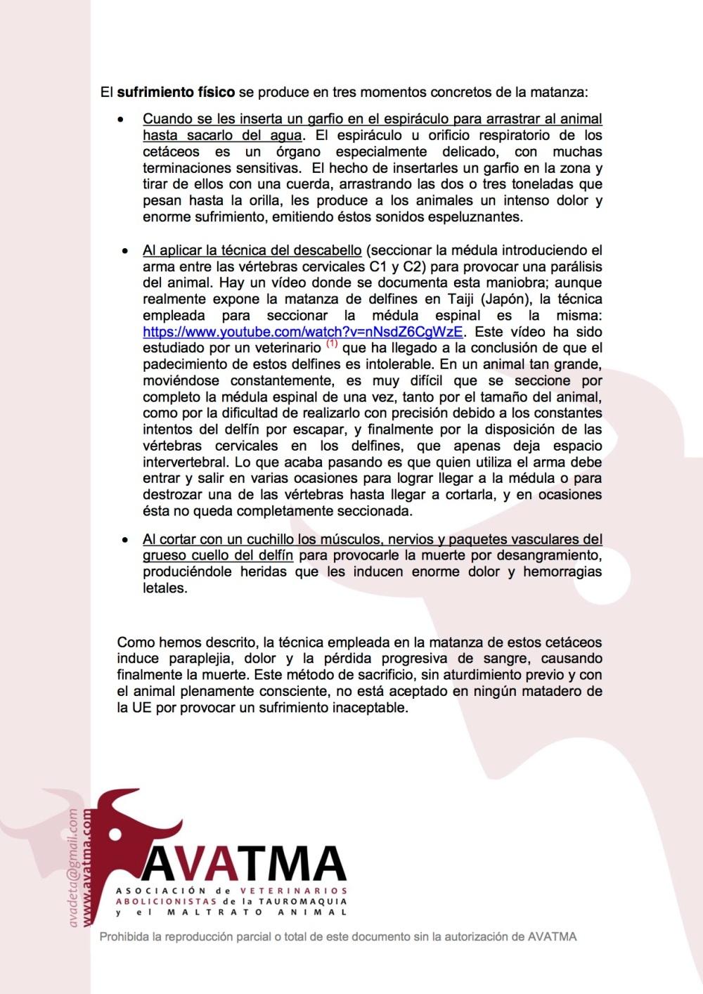 Informe AVATMA delfines Feroe5