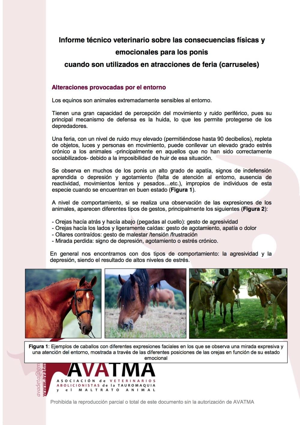 Informe carruseles ponis1