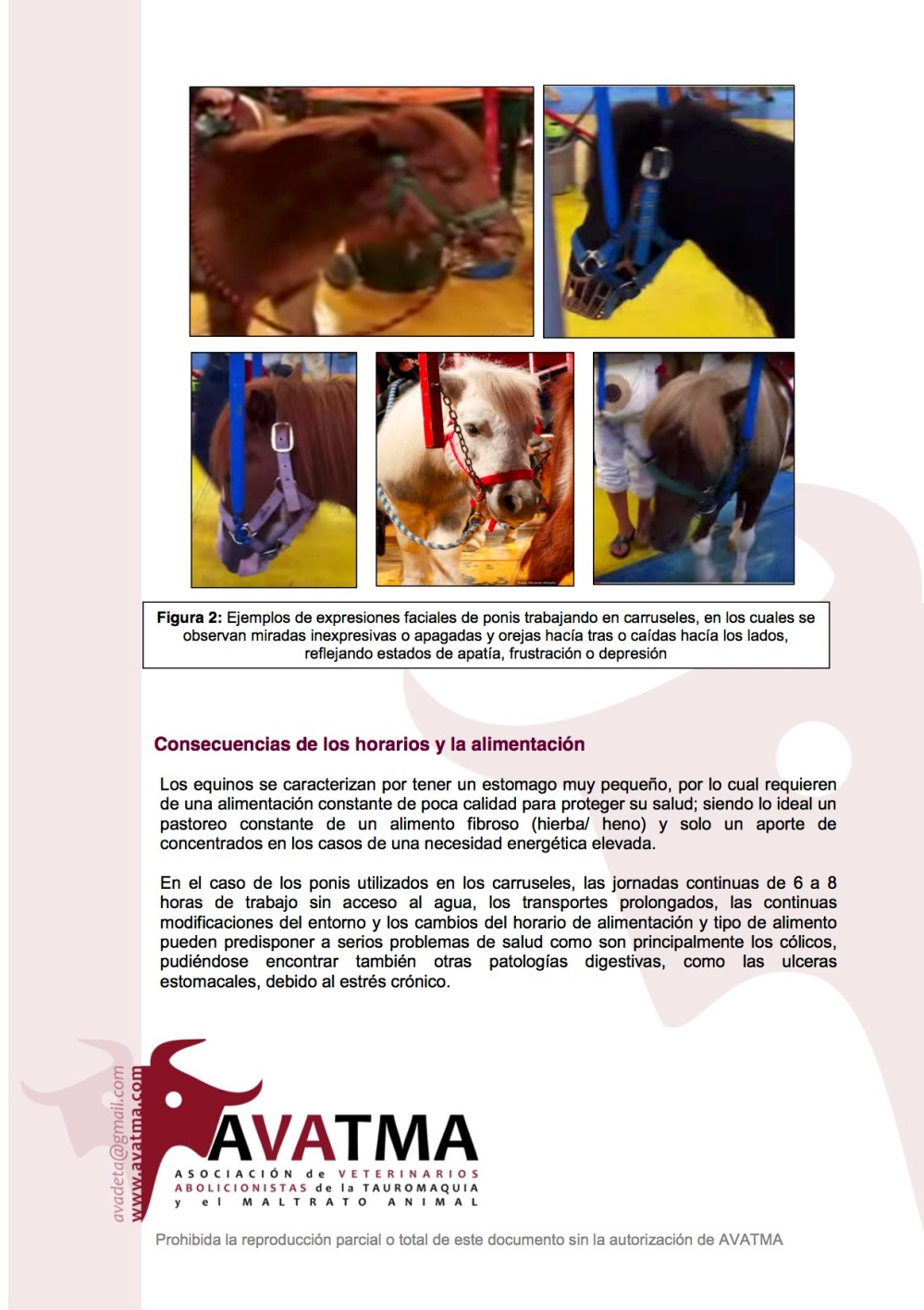 Informe carruseles ponis2