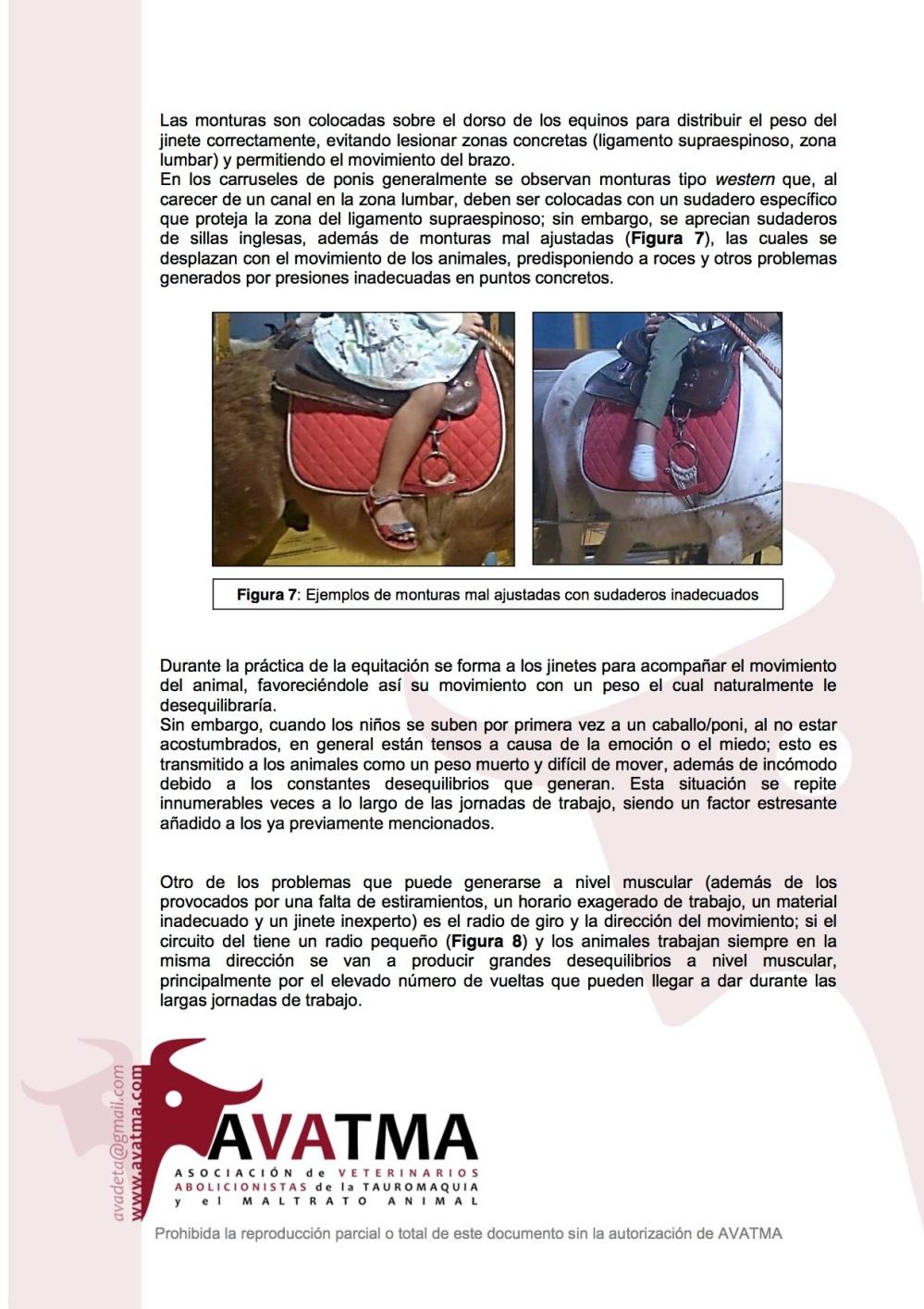 Informe carruseles ponis5