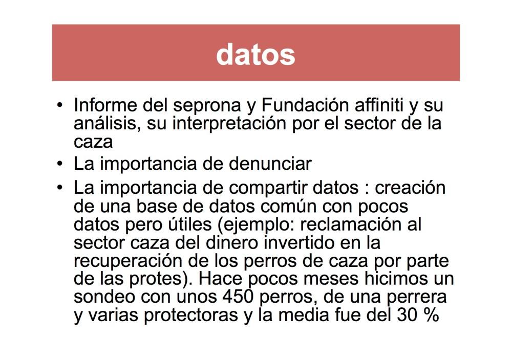 avatma-presentacion-pequenita10
