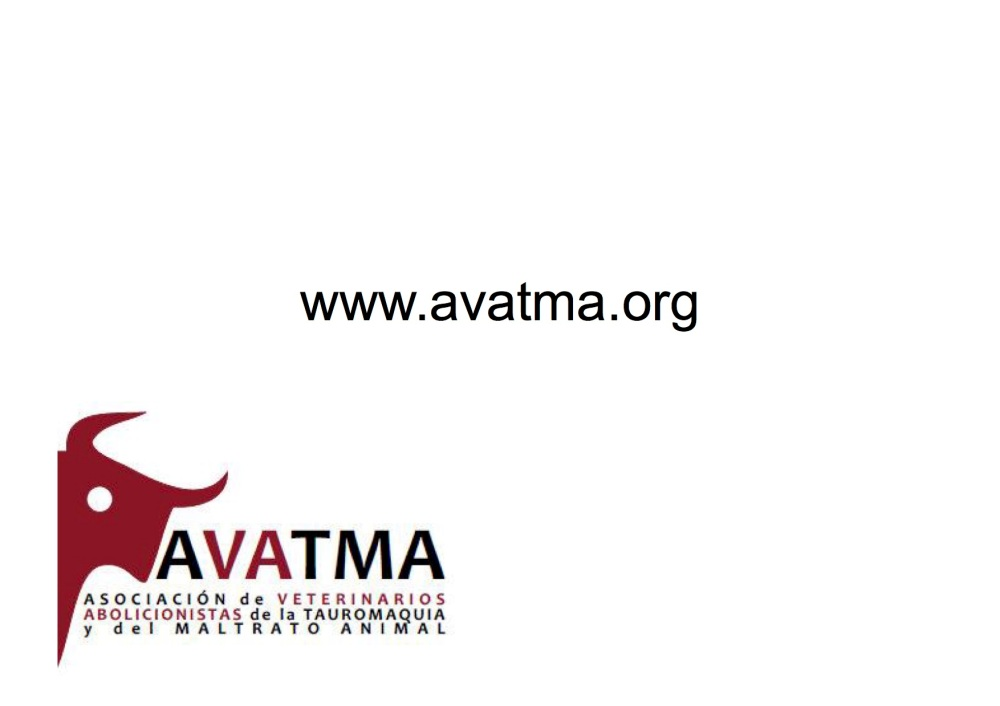 avatma-presentacion-pequenita13