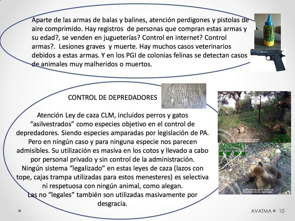 11CHARLA CES BADAJOZ_III congreso de derecho animal de Extremadura