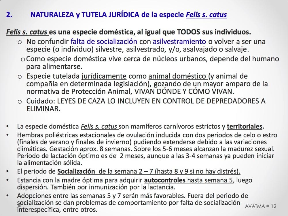 12CHARLA CES BADAJOZ_III congreso de derecho animal de Extremadura