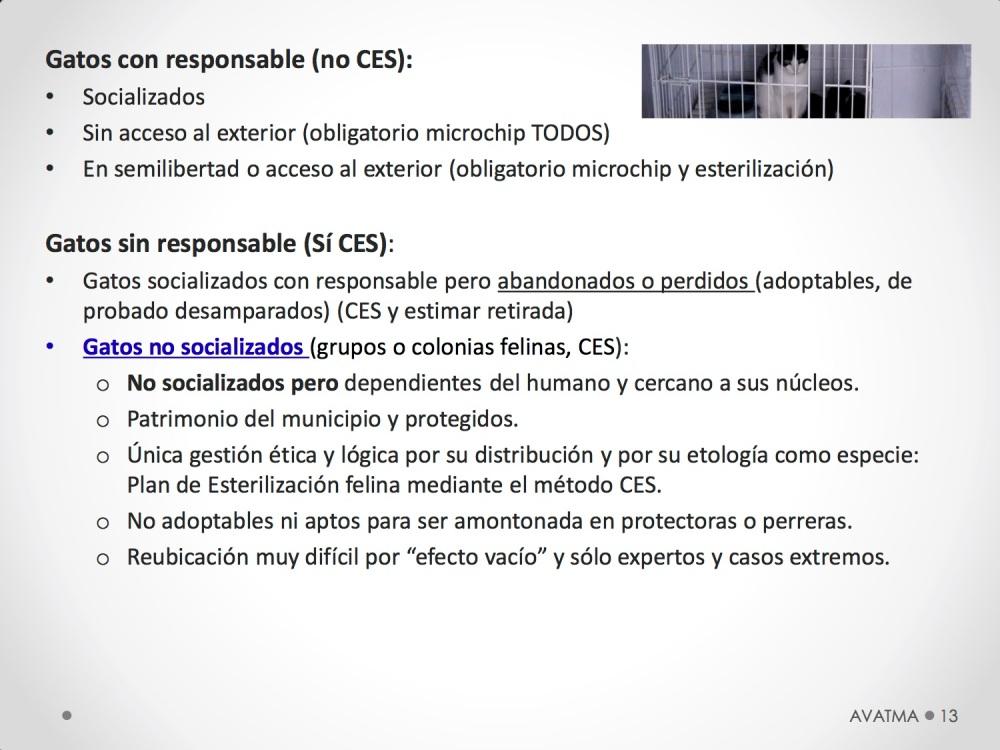 13CHARLA CES BADAJOZ_III congreso de derecho animal de Extremadura
