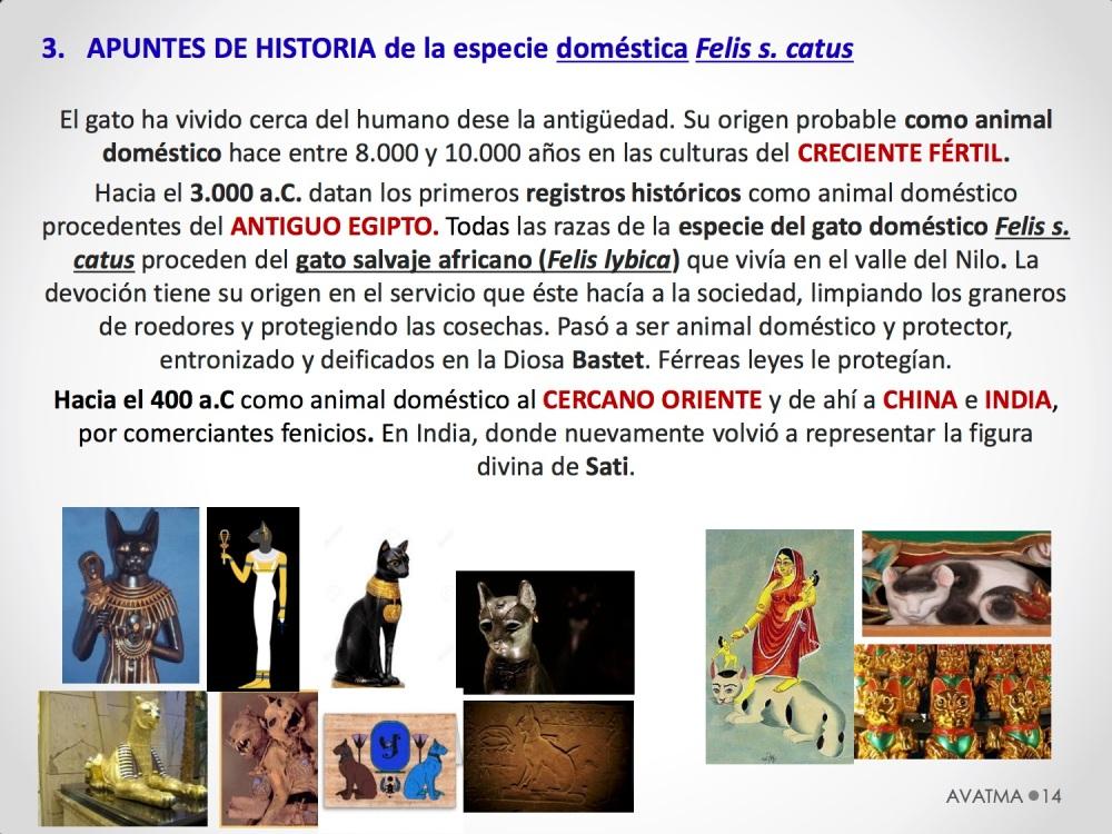14CHARLA CES BADAJOZ_III congreso de derecho animal de Extremadura