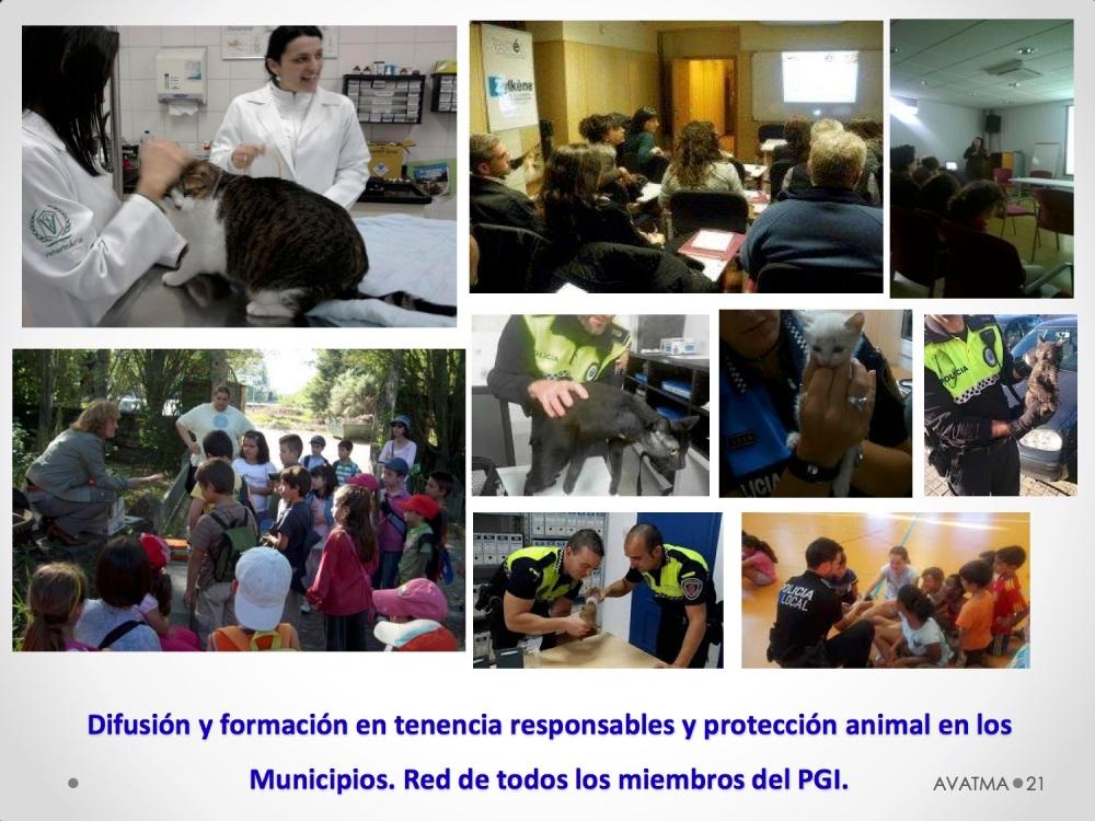 21CHARLA CES BADAJOZ_III congreso de derecho animal de Extremadura