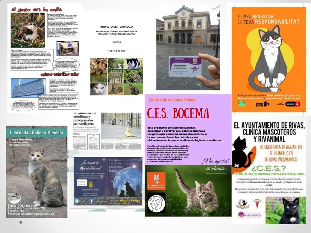 22CHARLA CES BADAJOZ_III congreso de derecho animal de Extremadura