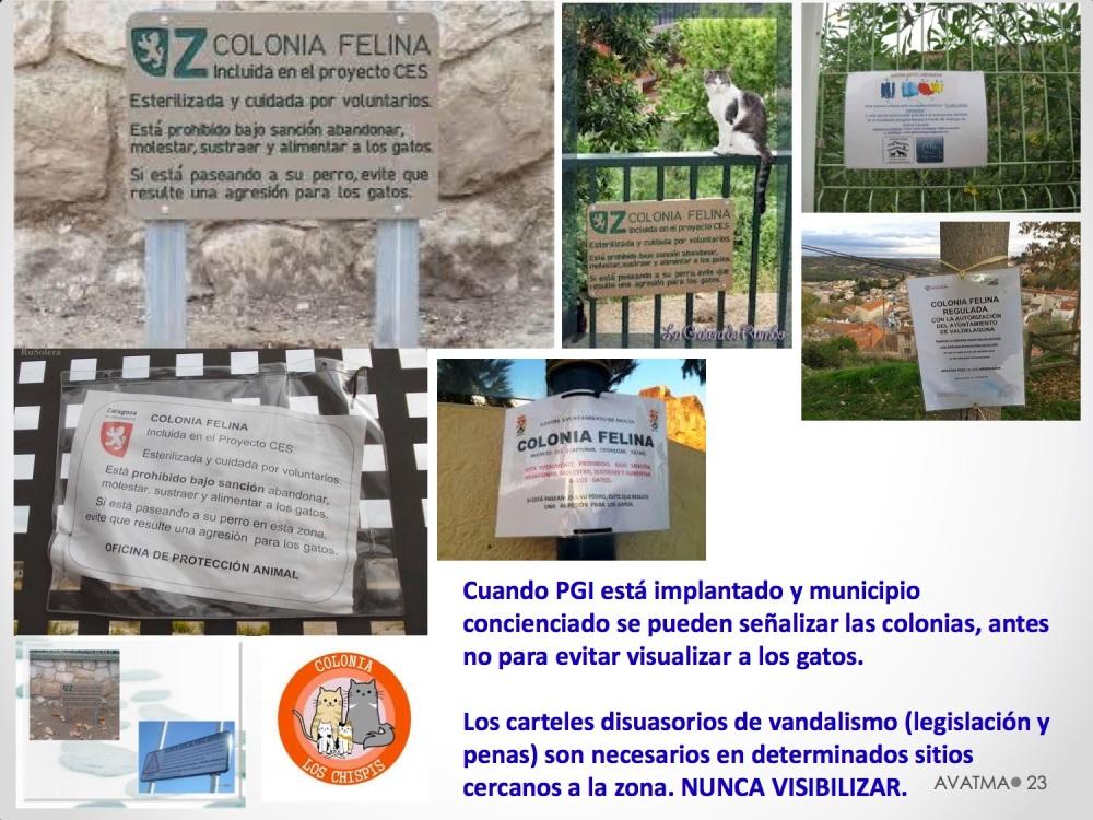 23CHARLA CES BADAJOZ_III congreso de derecho animal de Extremadura