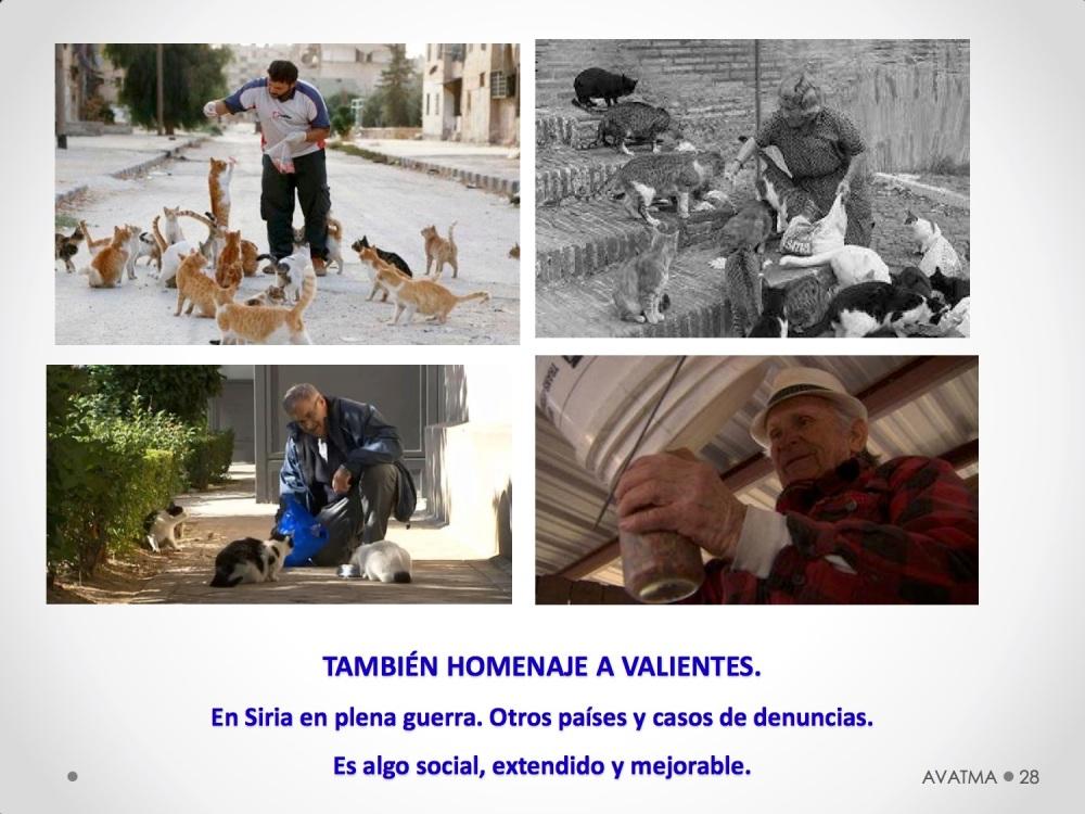 28CHARLA CES BADAJOZ_III congreso de derecho animal de Extremadura