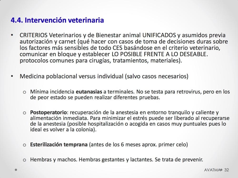 32CHARLA CES BADAJOZ_III congreso de derecho animal de Extremadura