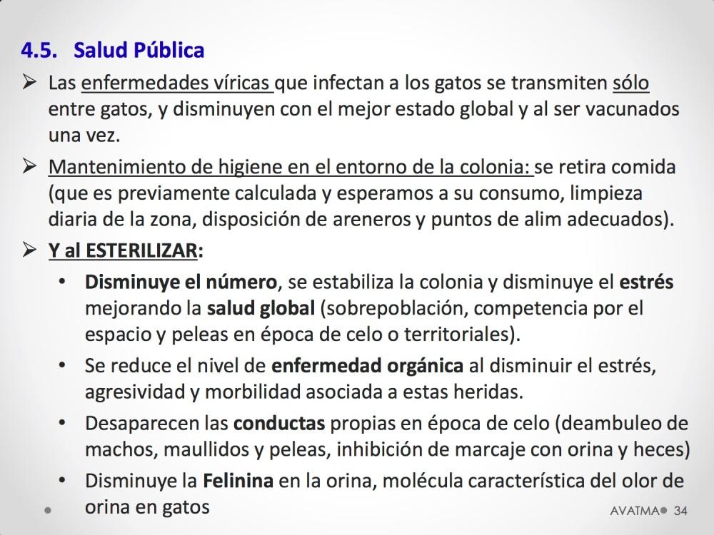 34CHARLA CES BADAJOZ_III congreso de derecho animal de Extremadura