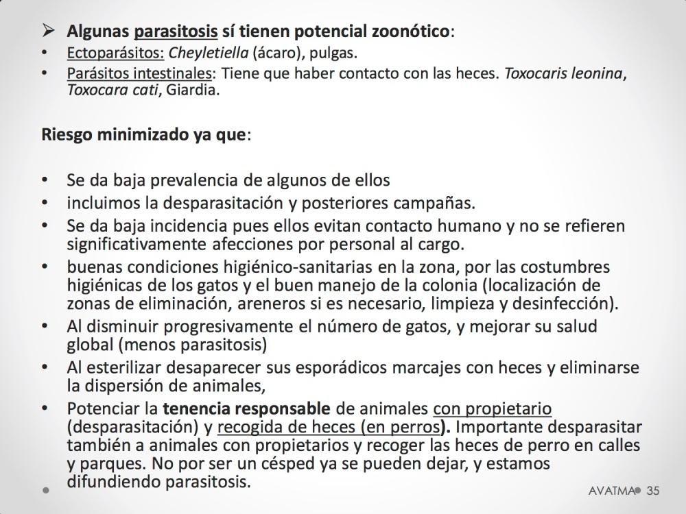 35CHARLA CES BADAJOZ_III congreso de derecho animal de Extremadura