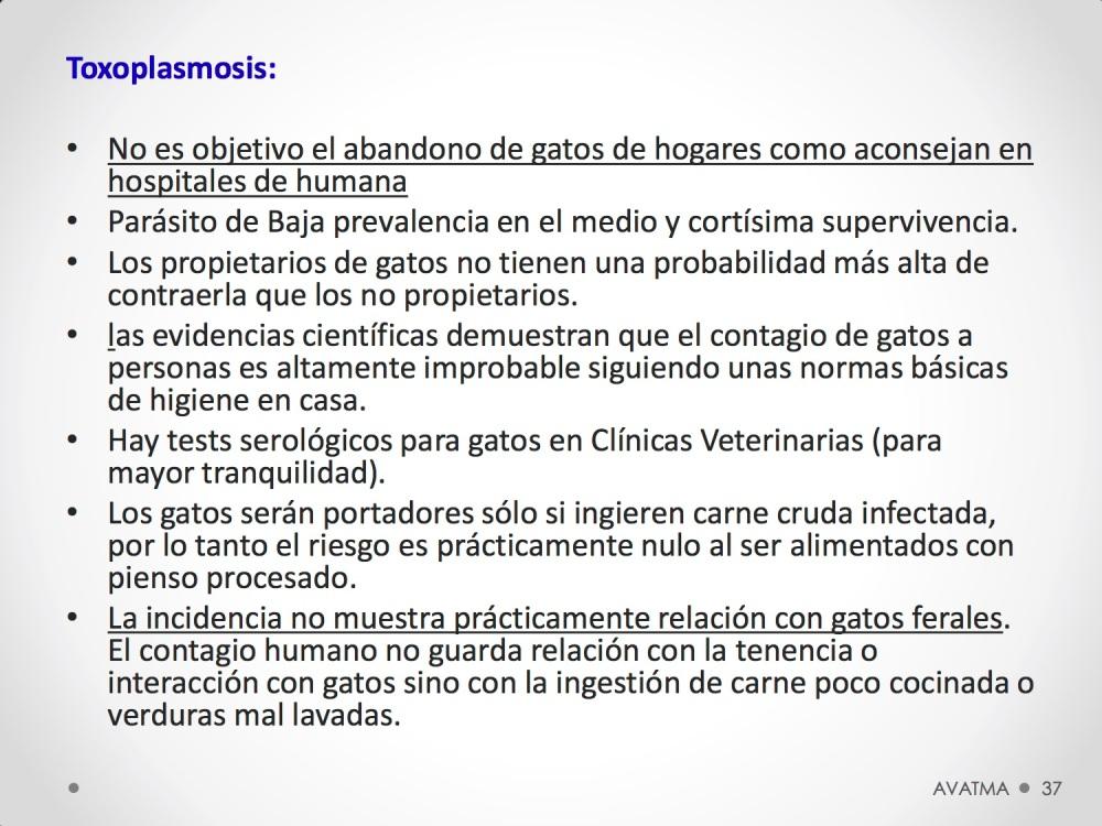 37CHARLA CES BADAJOZ_III congreso de derecho animal de Extremadura